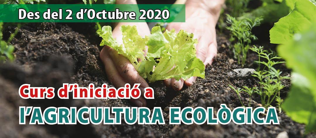 Curso de Iniciación a la AGRICULTURA ECOLÓGICA