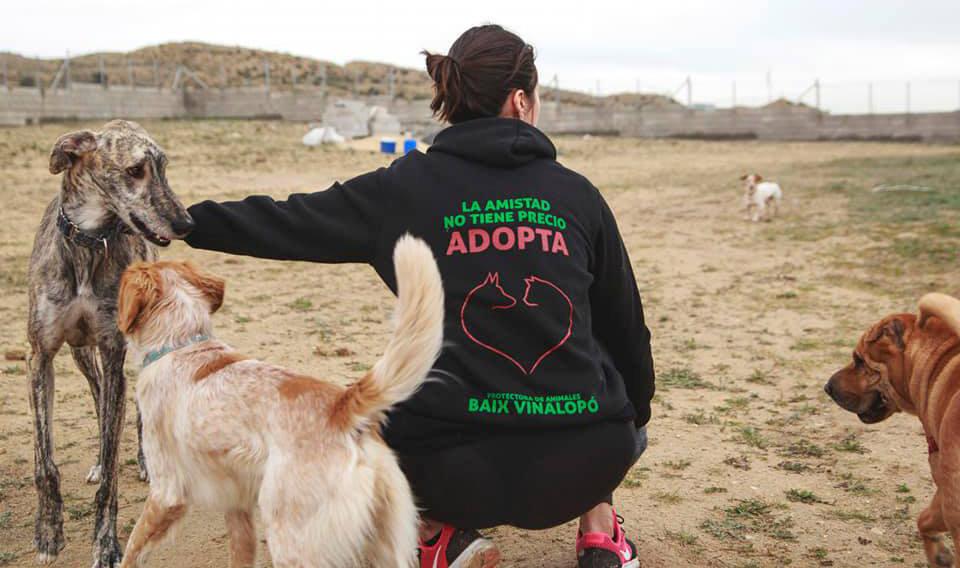 Sociedad Protectora de Animales y Plantas Baix Vinalopó