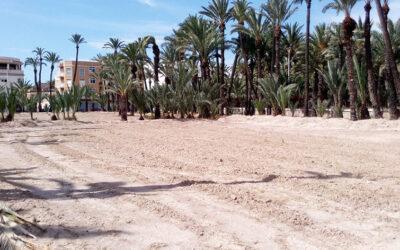 HORTA URBANA AL RAVAL – més info