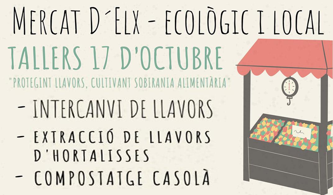 Tallers al Mercat Ecològic d'Elx